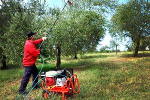 compressore per raccolta olive